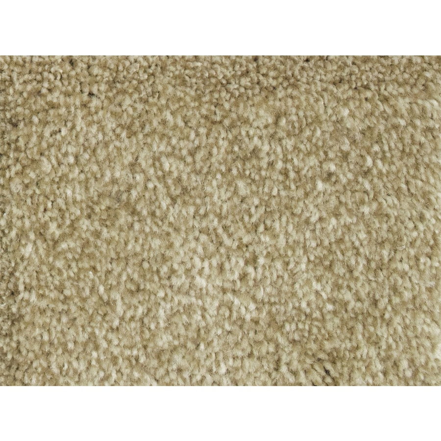 STAINMASTER PetProtect Purebred Groom Textured Interior Carpet