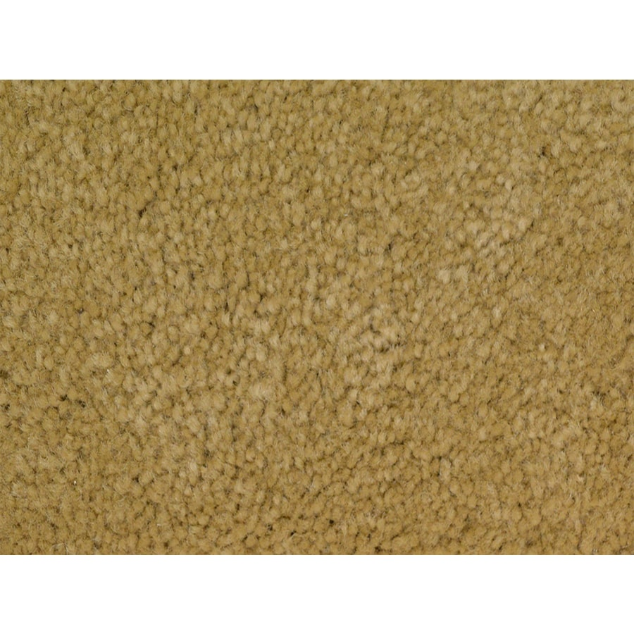 STAINMASTER PetProtect Purebred Points Textured Interior Carpet