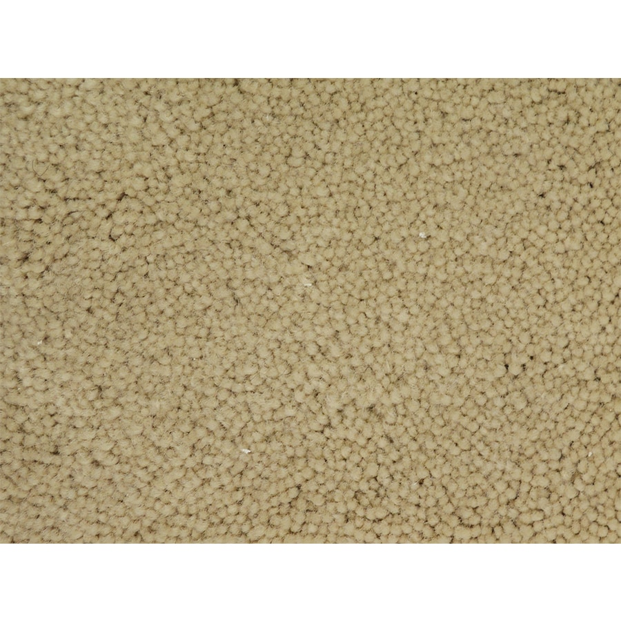 STAINMASTER PetProtect Purebred National Textured Interior Carpet
