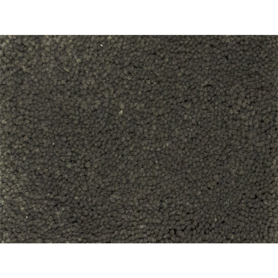 STAINMASTER PetProtect Purebred Breed Textured Indoor Carpet