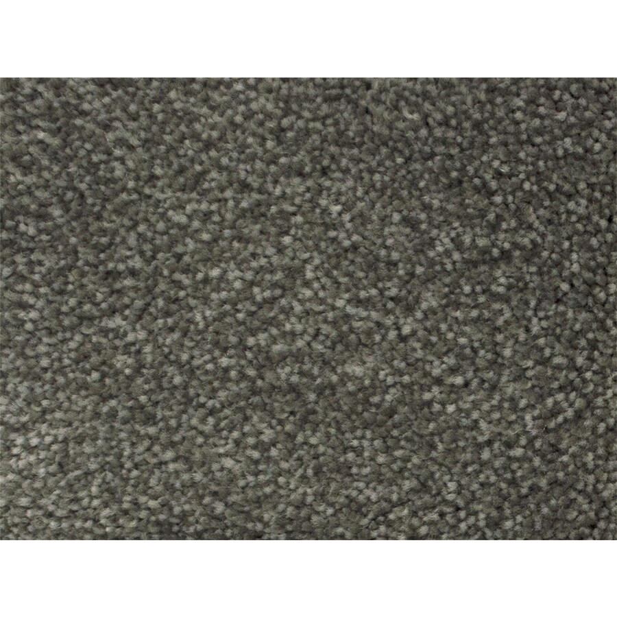 STAINMASTER PetProtect Purebred Campaign Textured Indoor Carpet