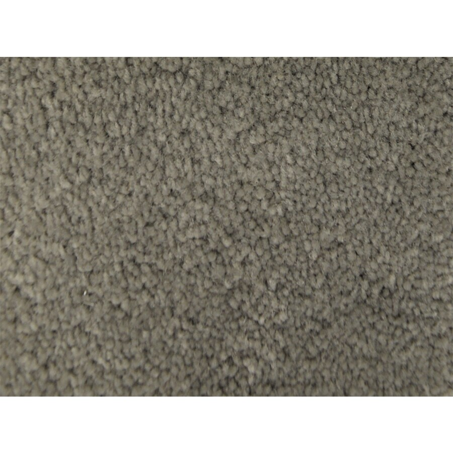 STAINMASTER PetProtect Purebred Obedience Textured Indoor Carpet