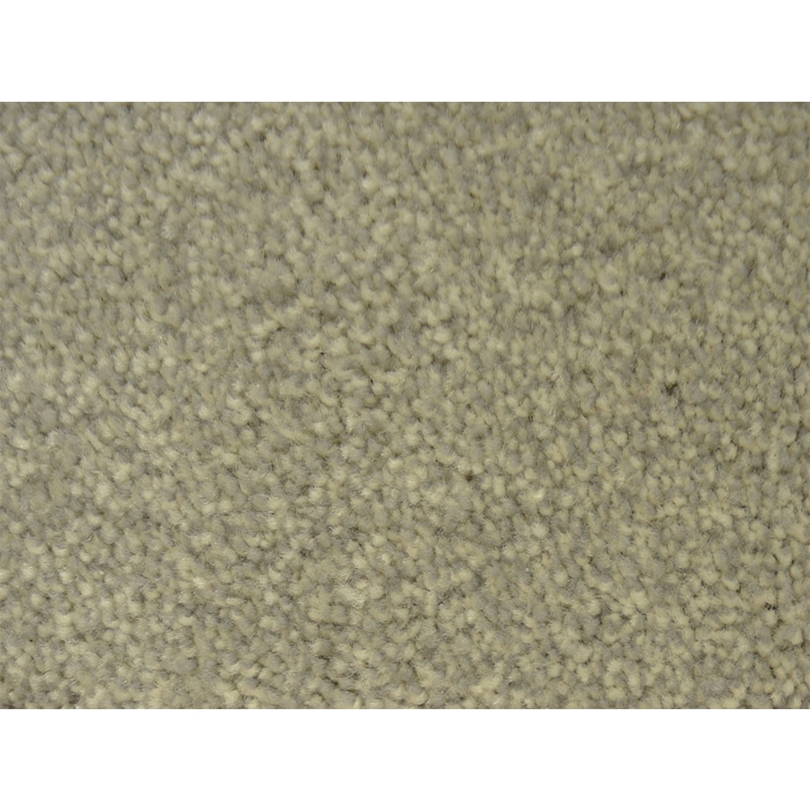 STAINMASTER PetProtect Purebred Kennel Textured Indoor Carpet