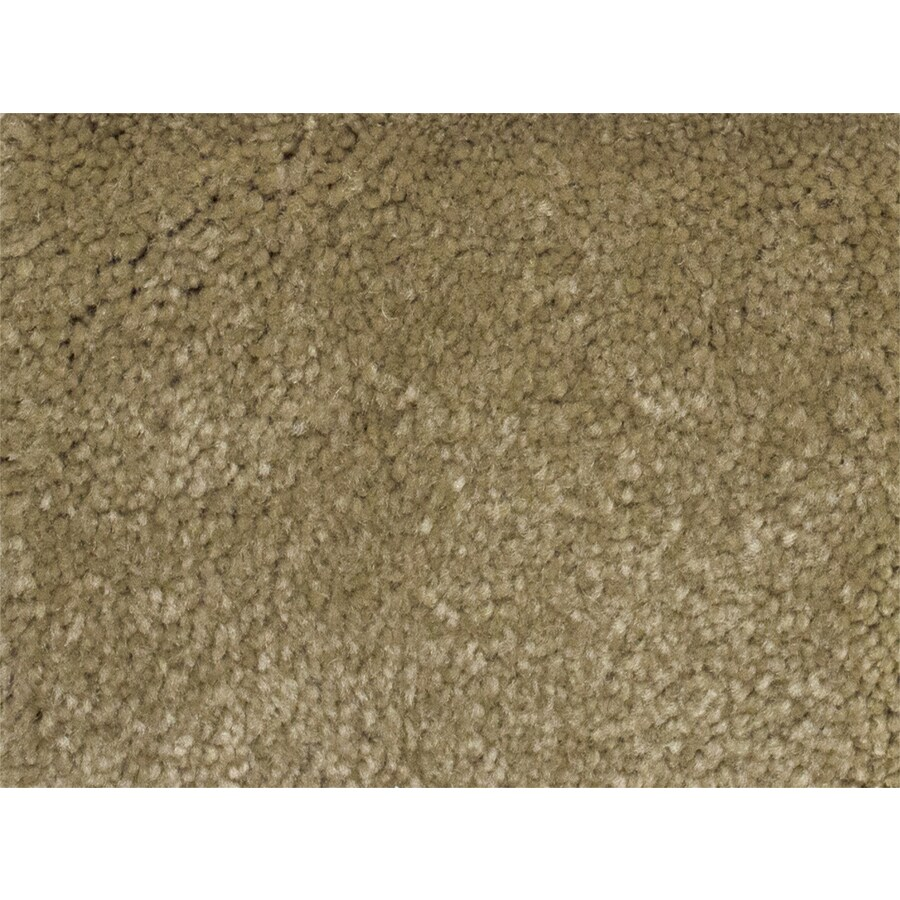 STAINMASTER PetProtect Pedigree Futurity Textured Interior Carpet