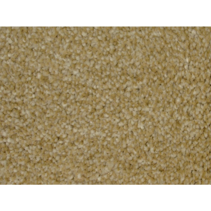 STAINMASTER PetProtect Pedigree Slicker Textured Interior Carpet