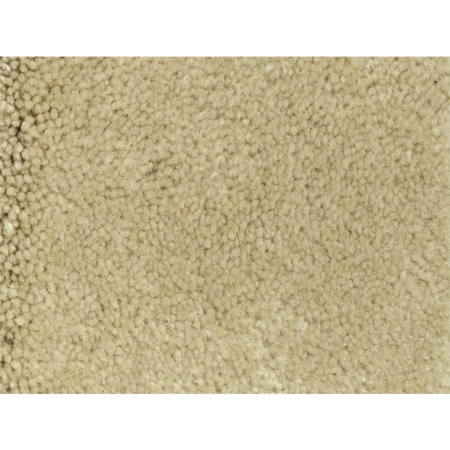 STAINMASTER PetProtect Pedigree Major Textured Indoor Carpet
