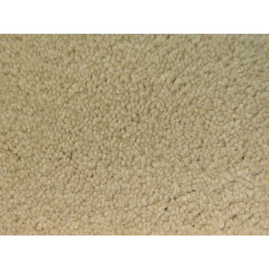 STAINMASTER PetProtect Pedigree Specialty Textured Indoor Carpet