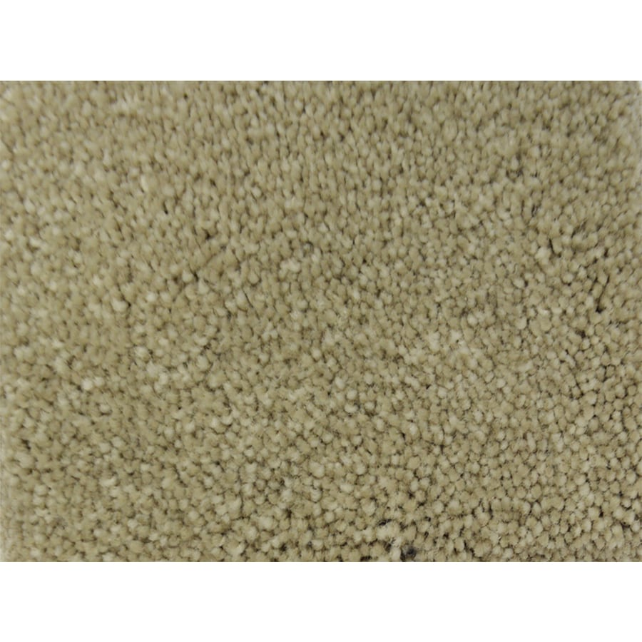 STAINMASTER PetProtect Pedigree Fly Ball Textured Interior Carpet