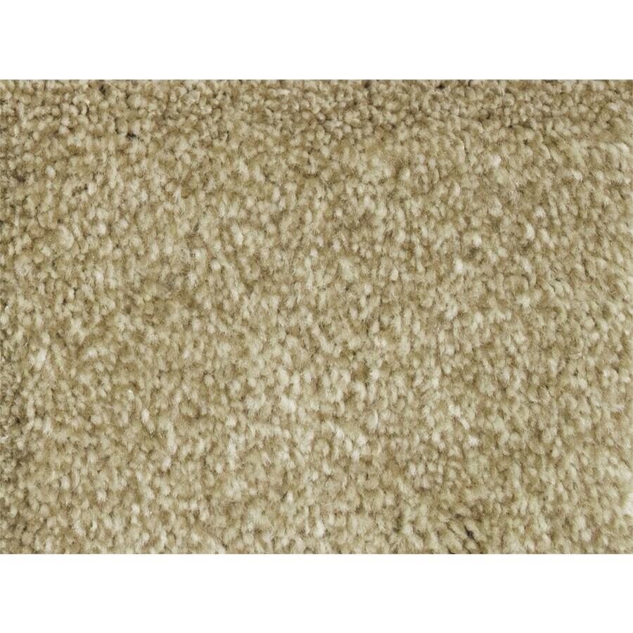 STAINMASTER Petprotect Pedigree Groom Textured Interior Carpet