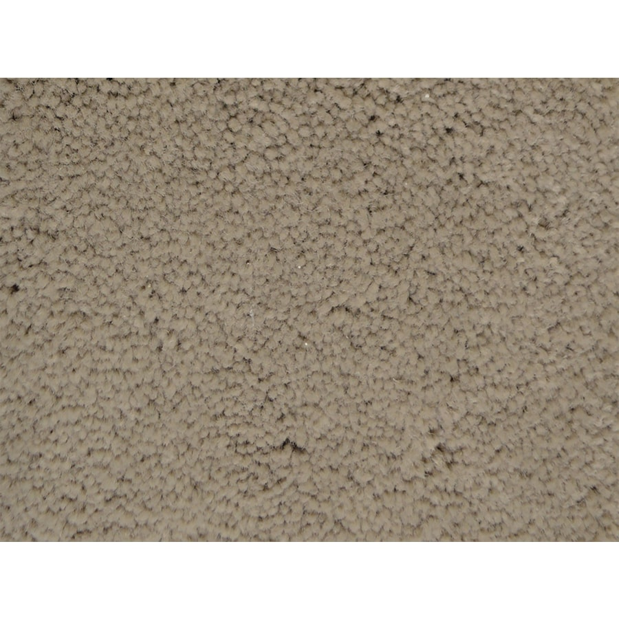 STAINMASTER PetProtect Pedigree Champion Textured Interior Carpet