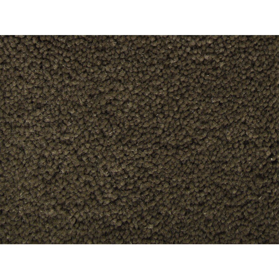 STAINMASTER PetProtect Pedigree Handler Textured Indoor Carpet