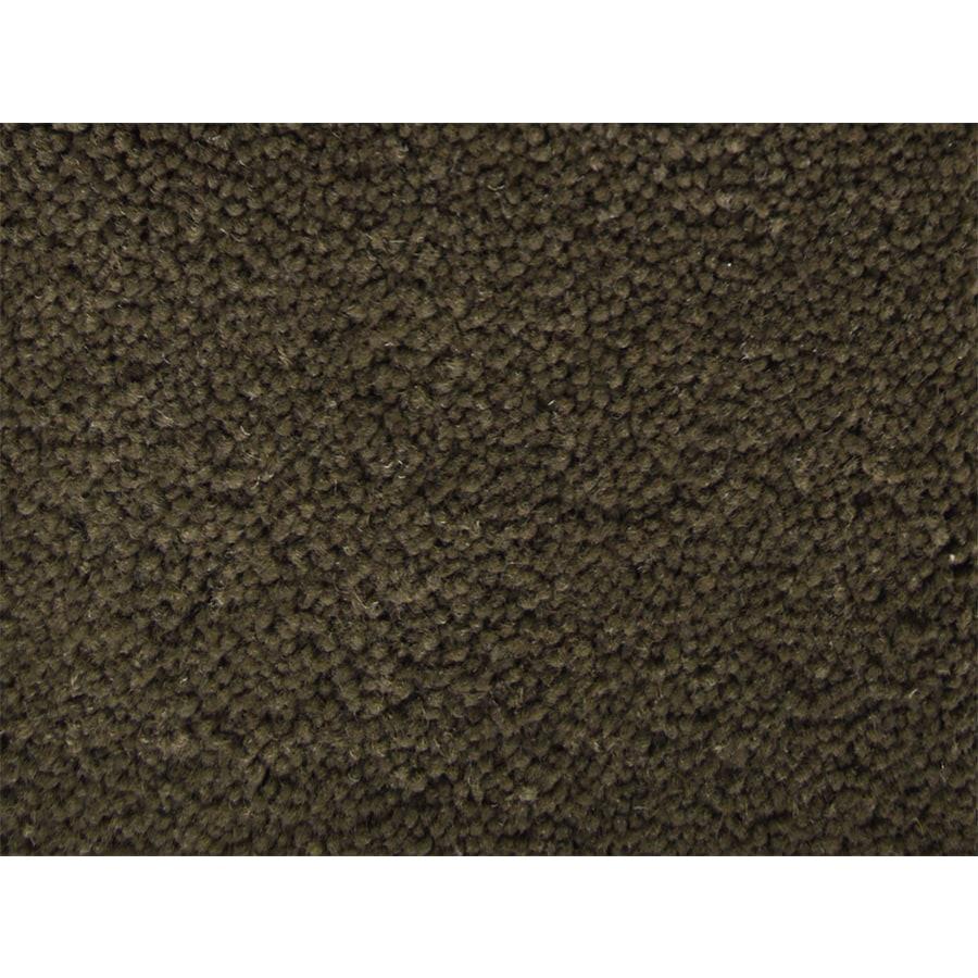 STAINMASTER Petprotect Pedigree Handler Textured Interior Carpet