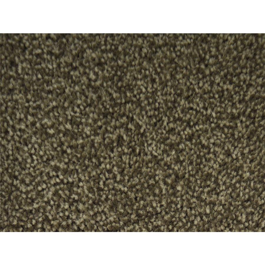 STAINMASTER Petprotect Pedigree Finish Textured Interior Carpet