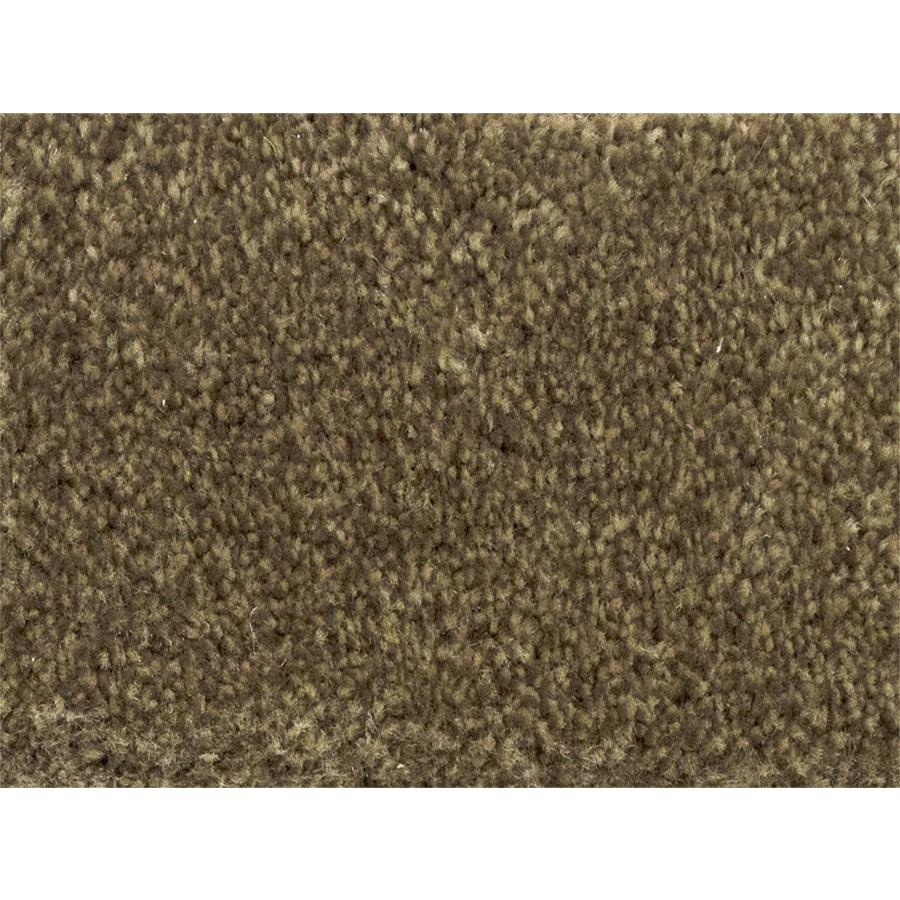 STAINMASTER Petprotect Pedigree Gait Textured Interior Carpet