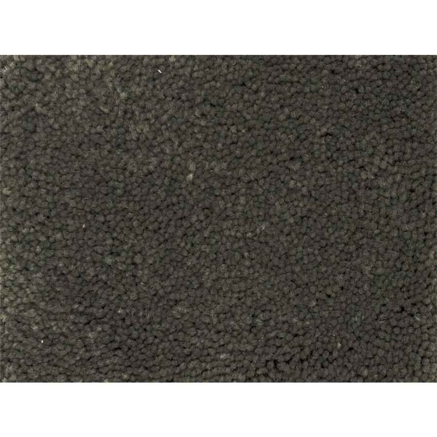 STAINMASTER PetProtect Pedigree Breed Textured Interior Carpet
