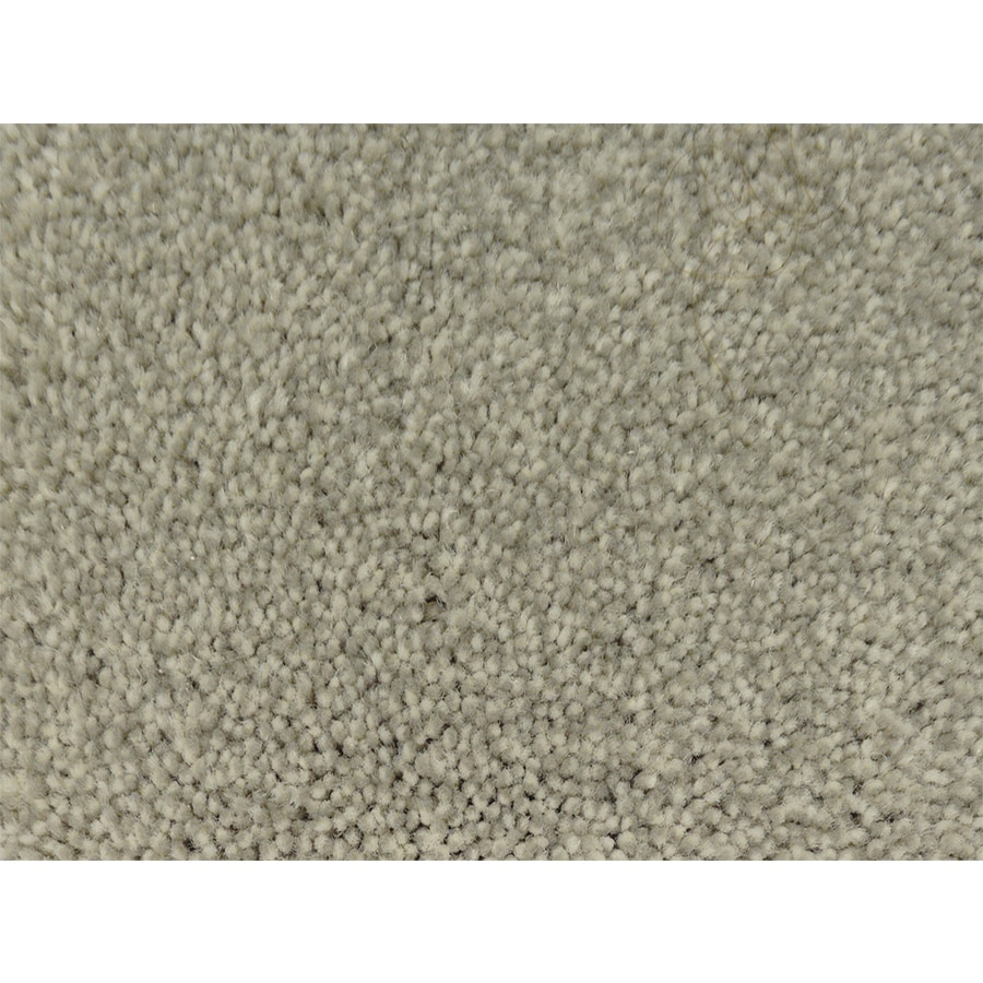 STAINMASTER PetProtect Pedigree Canine Textured Interior Carpet