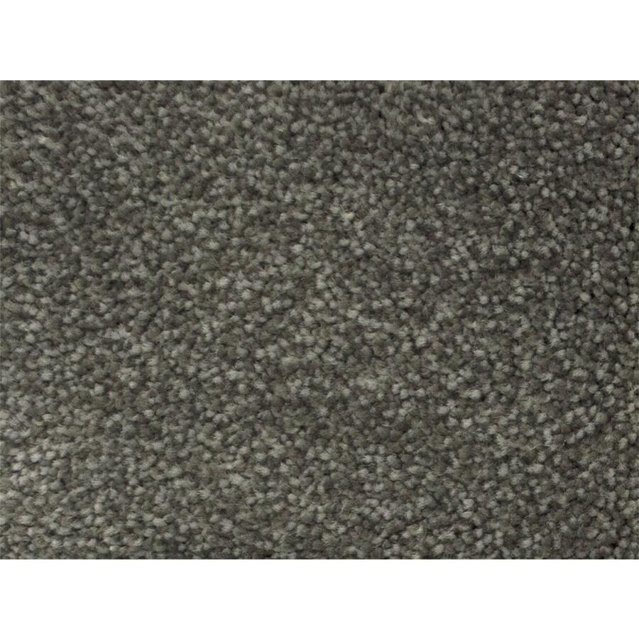 STAINMASTER Petprotect Pedigree Campaign Textured Interior Carpet
