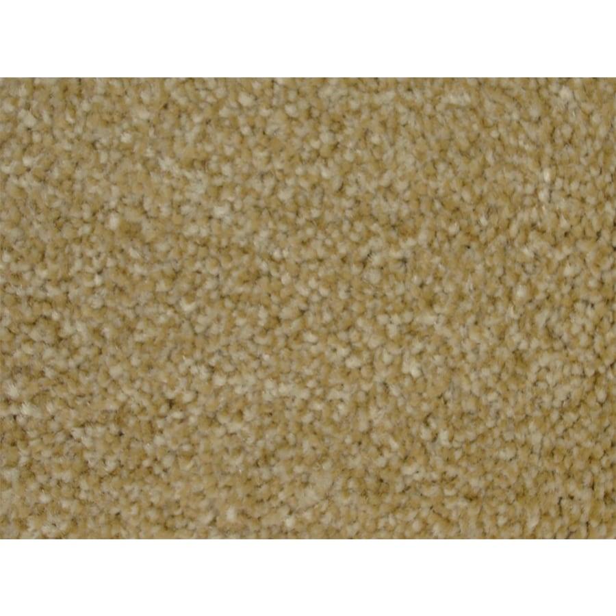 STAINMASTER PetProtect Best In Show Slicker Textured Indoor Carpet