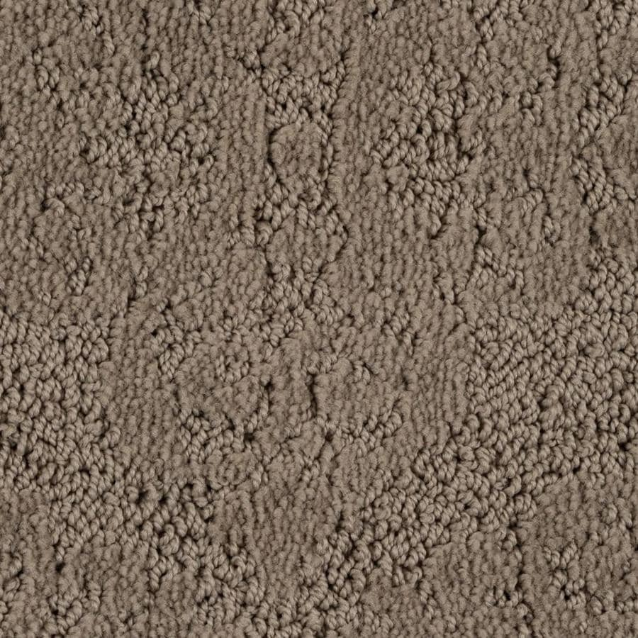 STAINMASTER PetProtect 12-ft W x Cut-to-Length 07 Austie Pattern Interior Carpet