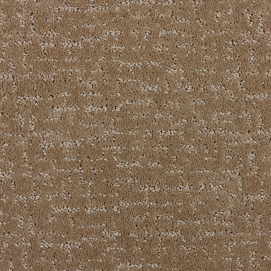 STAINMASTER PetProtect Treviso 12-ft W Essential Interior Carpet