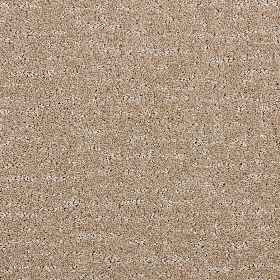 STAINMASTER PetProtect Treviso Light Chocolate Interior Carpet