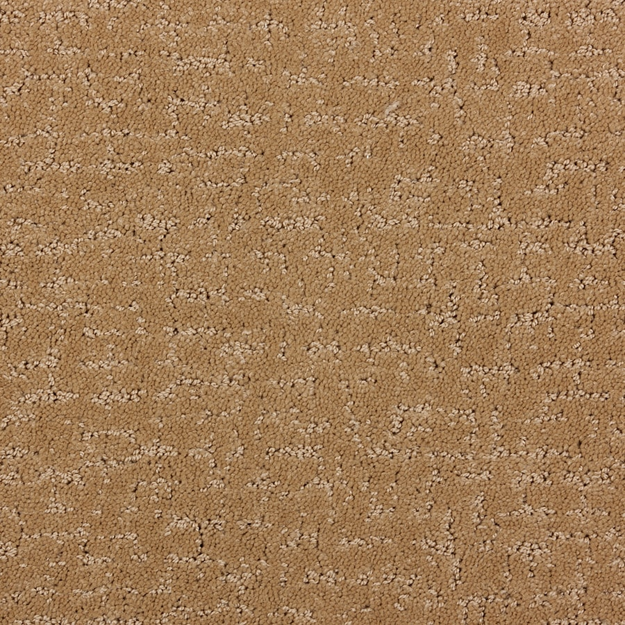 STAINMASTER PetProtect Treviso Special Beige Cut and Loop Indoor Carpet