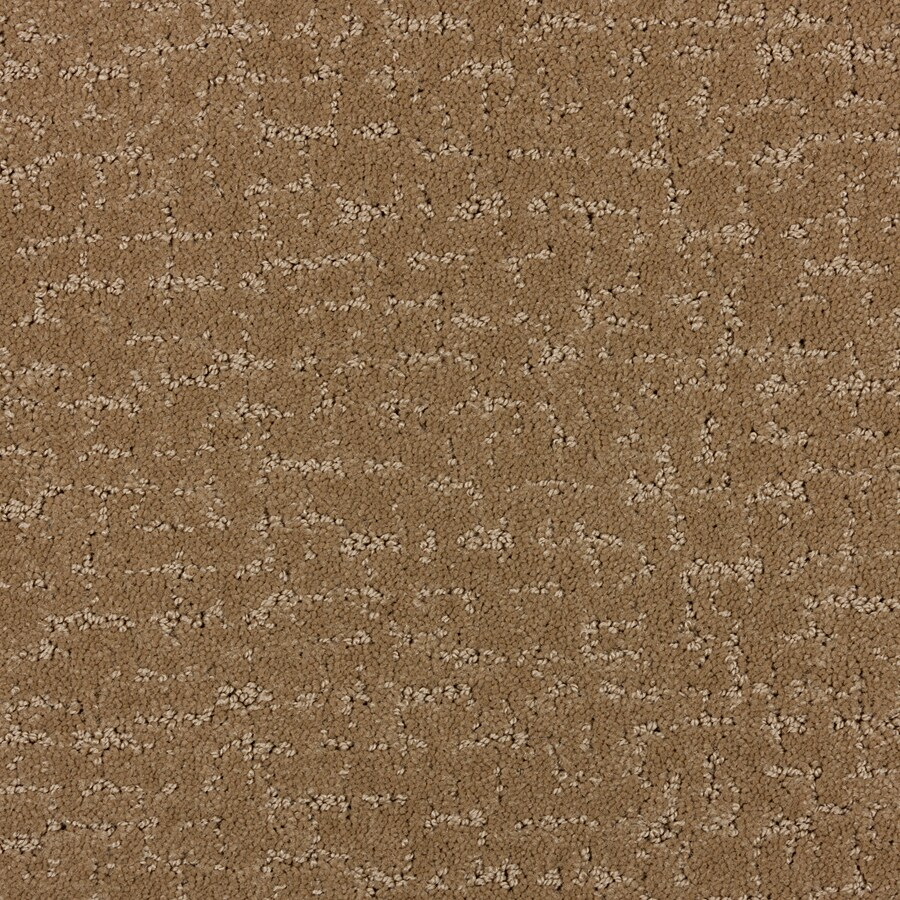 STAINMASTER PetProtect Treviso Cabriolet Brown Cut and Loop Indoor Carpet