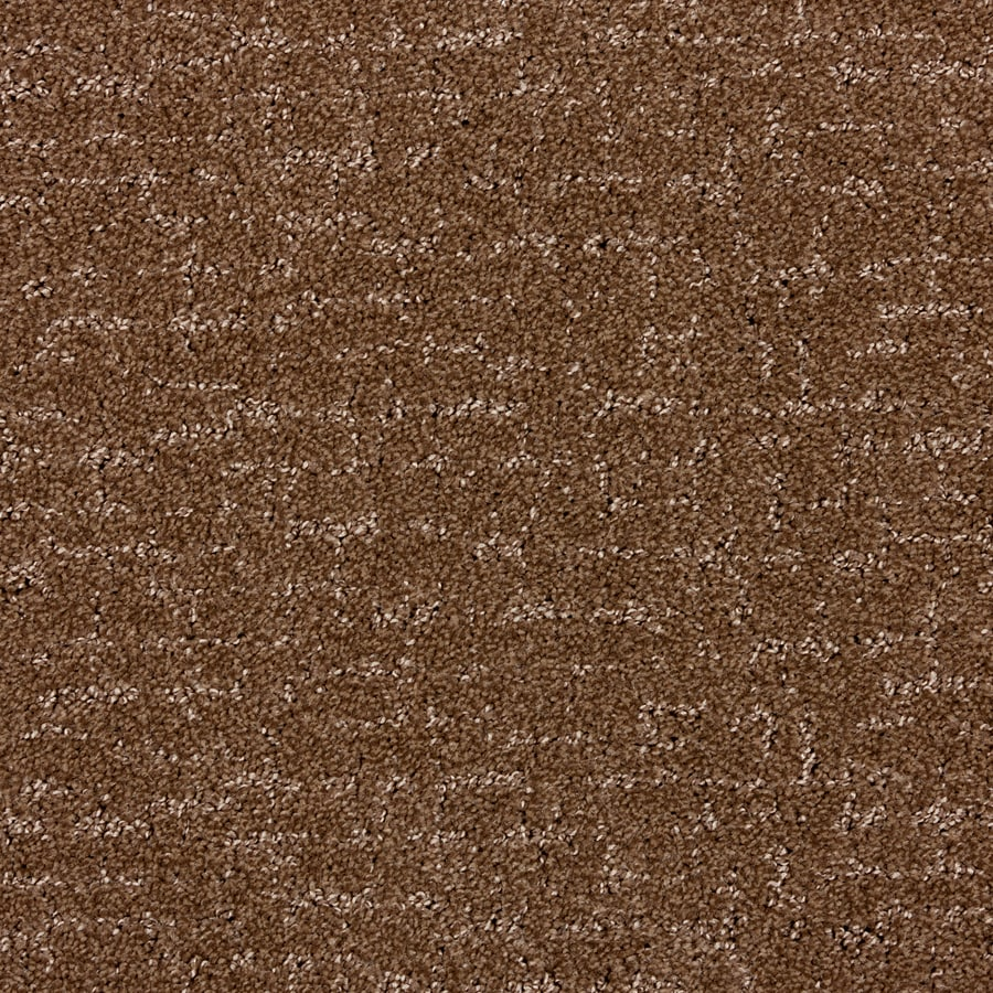 STAINMASTER PetProtect Treviso Red Fox Interior Carpet