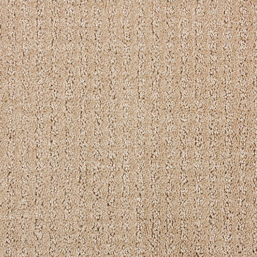 STAINMASTER PetProtect Sardi Dark Straw Cut and Loop Indoor Carpet