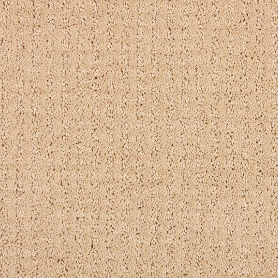 STAINMASTER Petprotect Sardi Sierra Leone Interior Carpet
