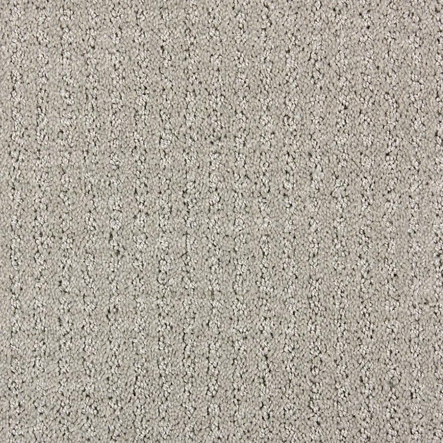 STAINMASTER PetProtect Sardi North American Grey Cut and Loop Indoor Carpet