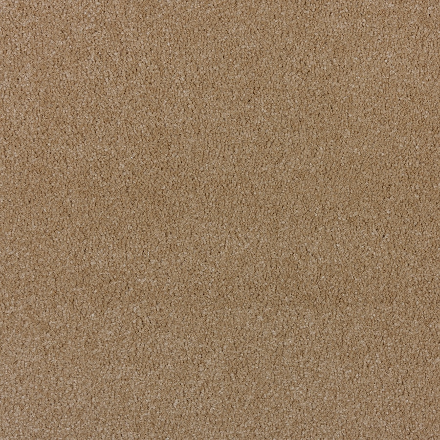 STAINMASTER PetProtect Wembley Special Beige Saxony Indoor Carpet