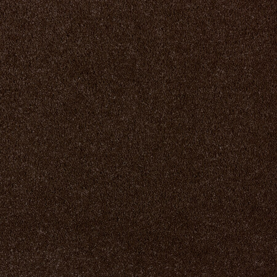 STAINMASTER PetProtect Wembley 12-ft W Docker Brown Plush Interior Carpet