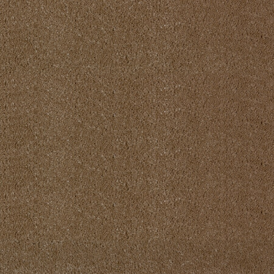 STAINMASTER PetProtect Wembley Cabriolet Brown Saxony Indoor Carpet
