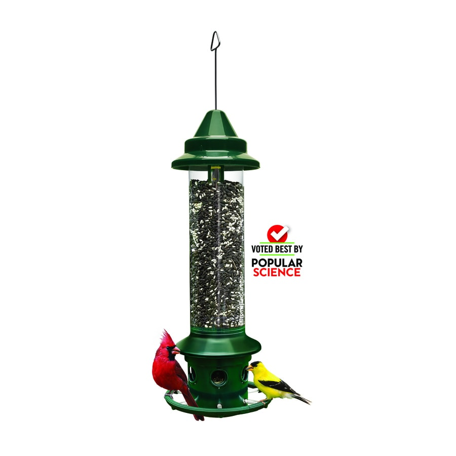 shop bird feeders at lowes com