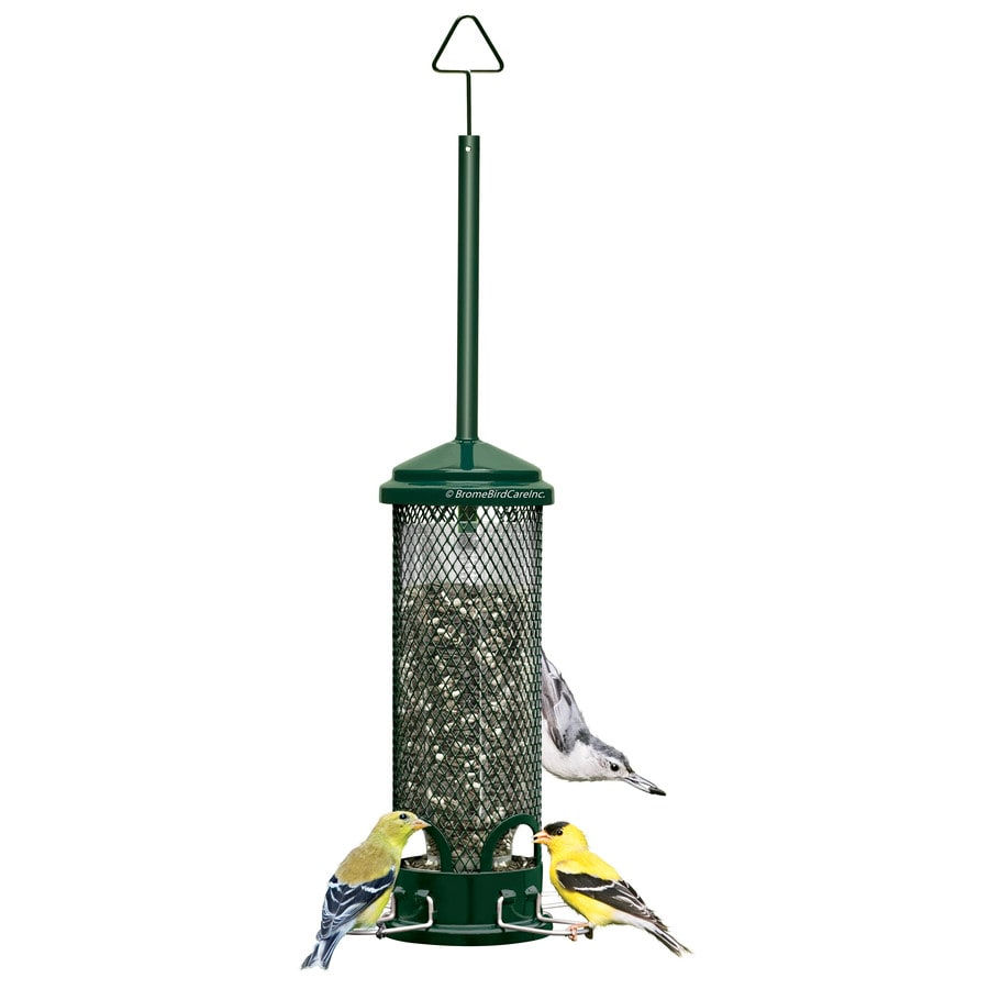 Shop squirrel buster metal squirrel resistant tube bird for Bird feed tin
