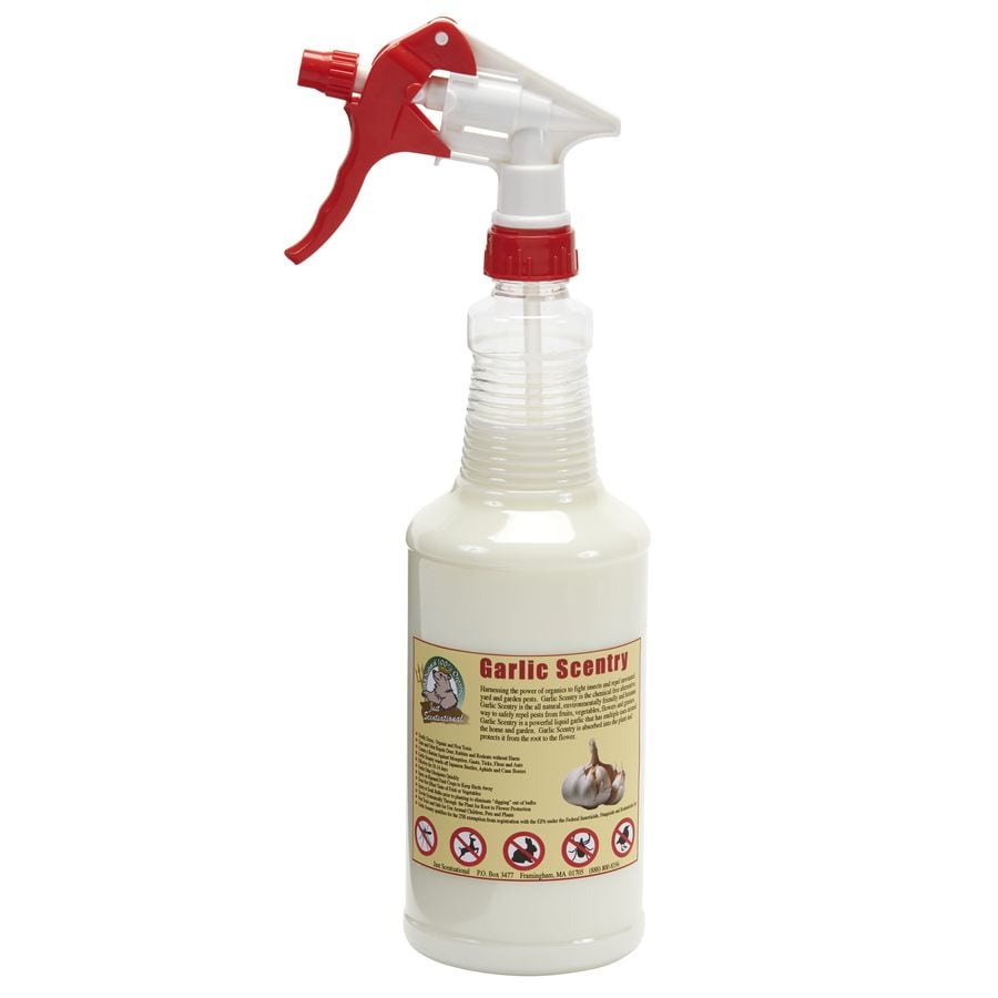 Just Scentsational Garlic Scentry 32 fl oz Liquid Trigger Spray Animal/Insect Repellent