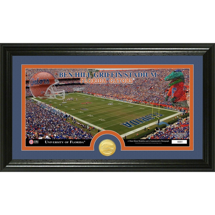 The Highland Mint 20-in W x 12-in H University of Florida Stadium Bronze Coin Panoramic Photo Mint Wall Art