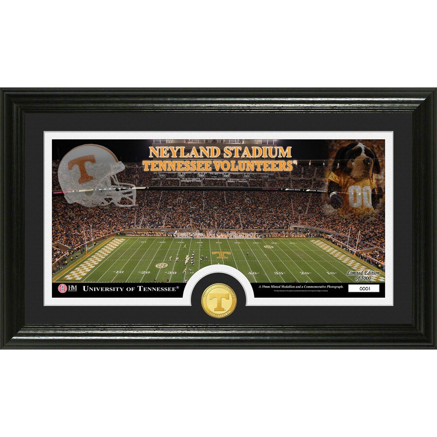 The Highland Mint 20-in W x 12-in H University of Tennessee Stadium Bronze Coin Panoramic Photo Mint Wall Art