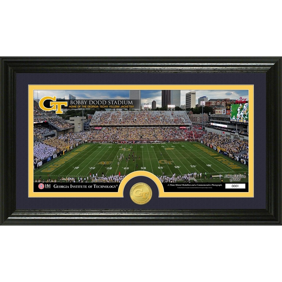The Highland Mint 20-in W x 12-in H Georgia Institute of Technology Stadium Bronze Coin Panoramic Photo Mint Wall Art