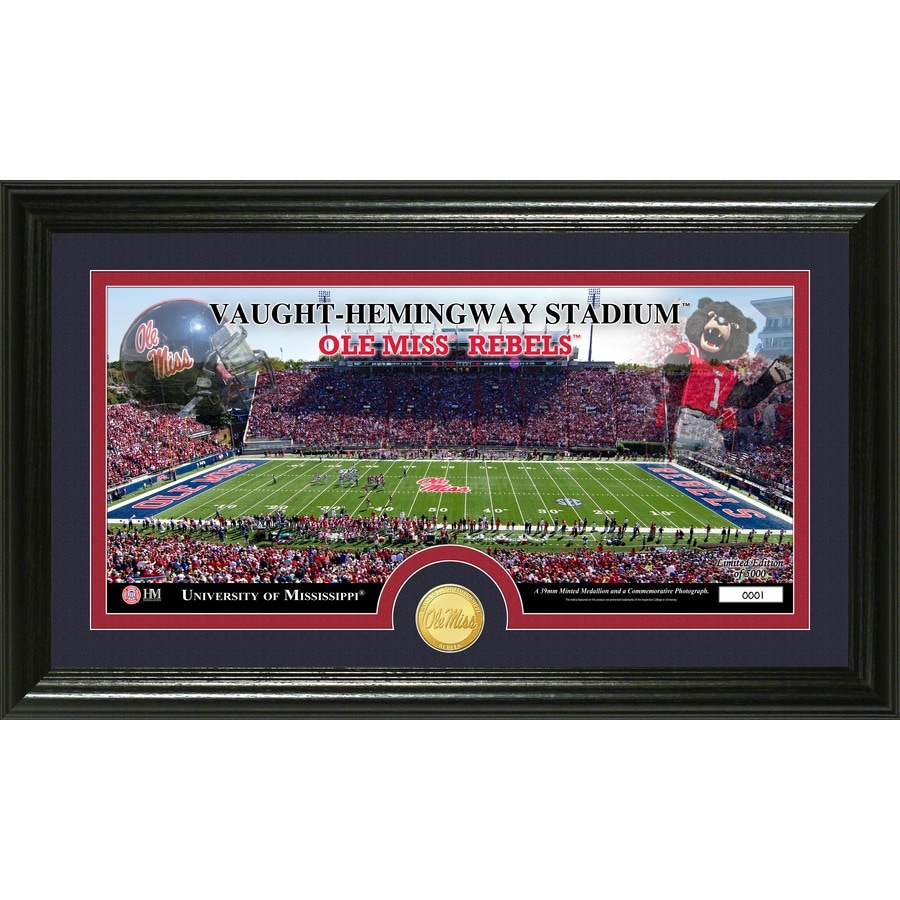 The Highland Mint 20-in W x 12-in H University of Mississippi Stadium Minted Coin Panoramic Photo Mint Wall Art