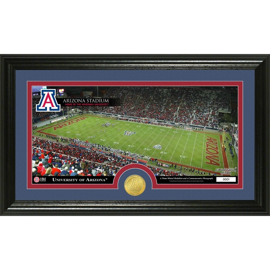 The Highland Mint 20-in W x 12-in H University of Arizona Stadium Bronze Coin Panoramic Photo Mint Wall Art