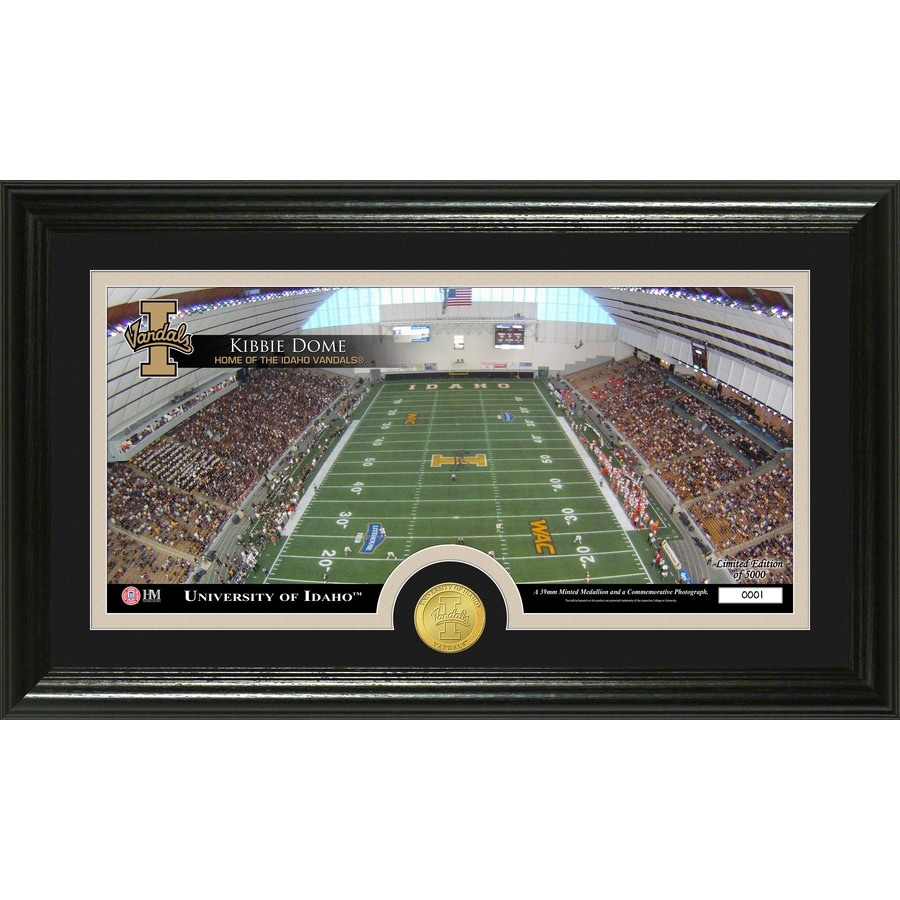 The Highland Mint 20-in W x 12-in H University of Idaho Stadium Bronze Coin Panoramic Photo Mint Wall Art