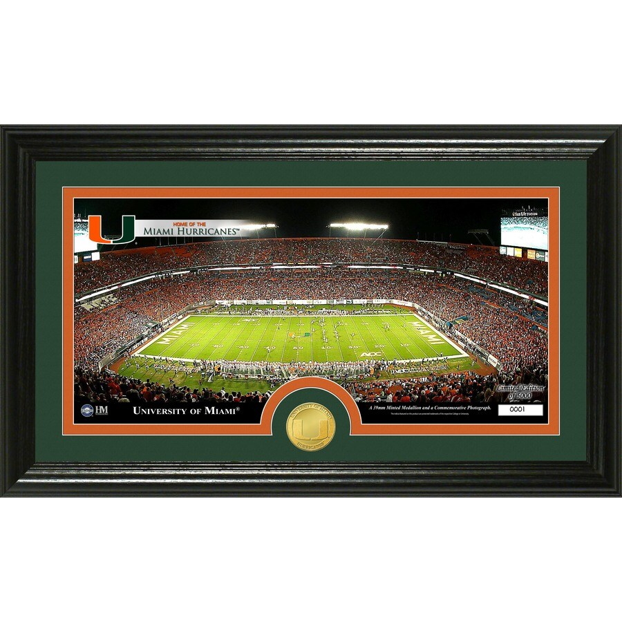 The Highland Mint 20-in W x 12-in H University of Miami Stadium Bronze Coin Panoramic Photo Mint Wall Art