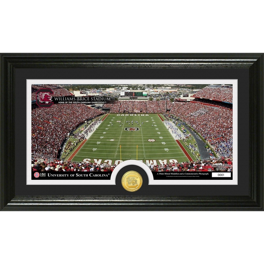 The Highland Mint 20-in W x 12-in H University of South Carolina Stadium Bronze Coin Panoramic Photo Mint Wall Art