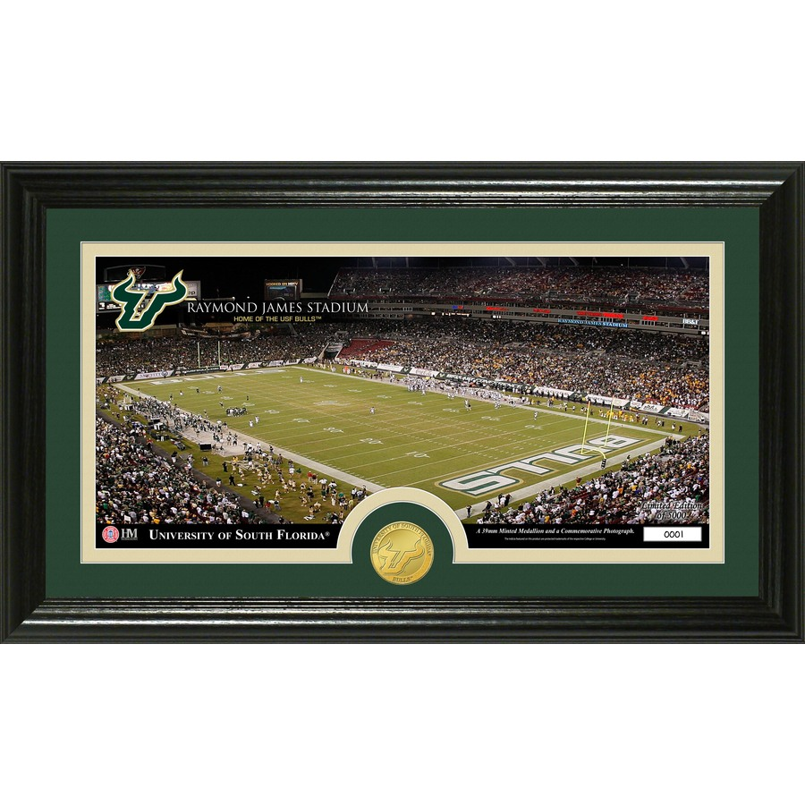 The Highland Mint 20-in W x 12-in H University of South Florida Stadium Bronze Coin Panoramic Photo Mint Wall Art