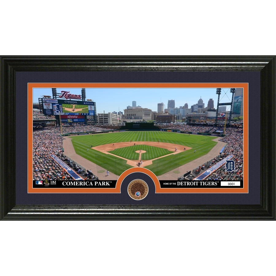 The Highland Mint 20-in W x 12-in H Detroit Tigers Infield Dirt Coin Panoramic Photo Mint Wall Art