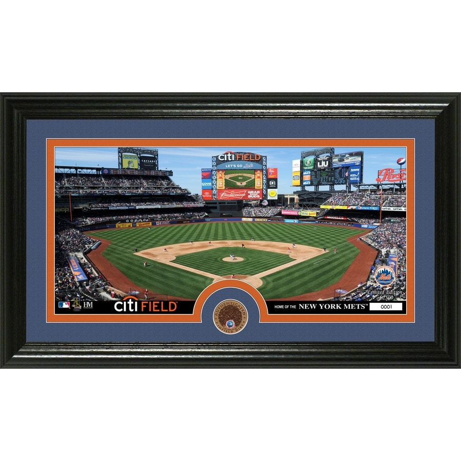 The Highland Mint 20-in W x 12-in H New York Mets Infield Dirt Coin Panoramic Photo Mint Wall Art
