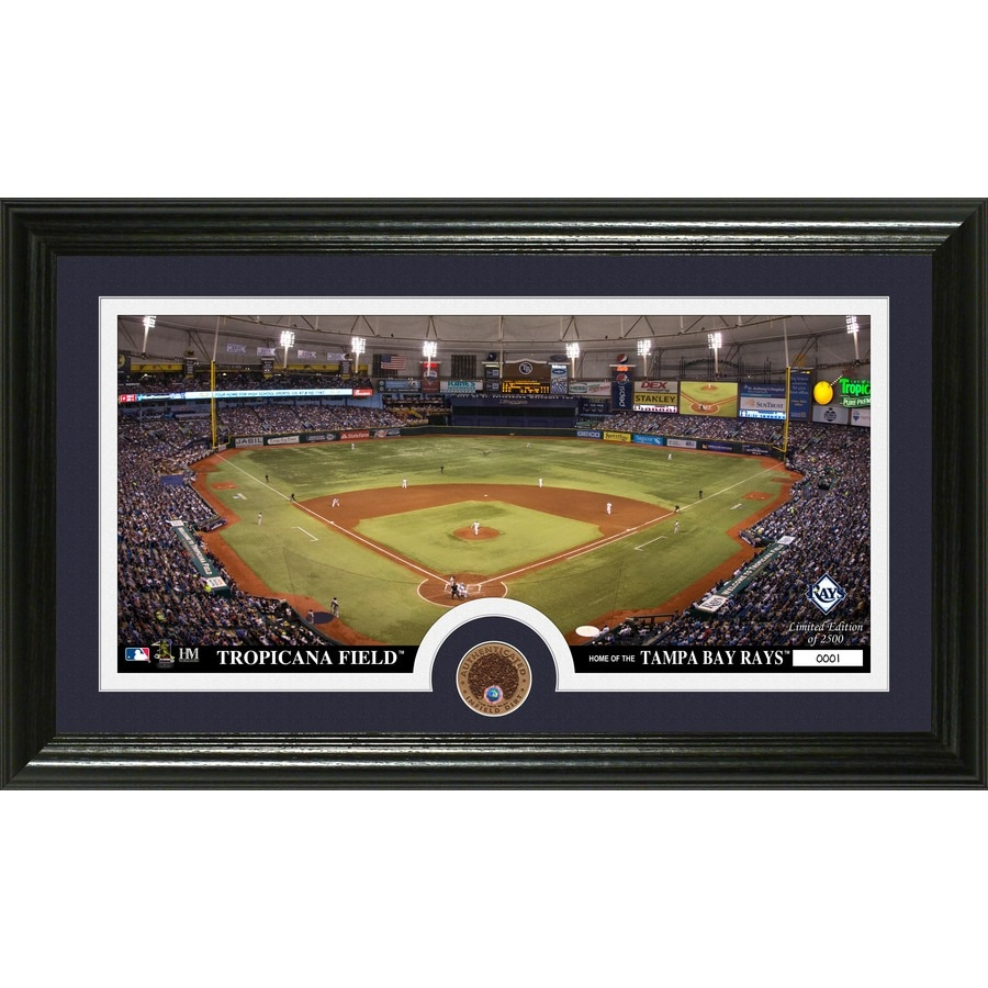 The Highland Mint 20-in W x 12-in H Tampa Bay Rays Infield Dirt Coin Panoramic Photo Mint Wall Art