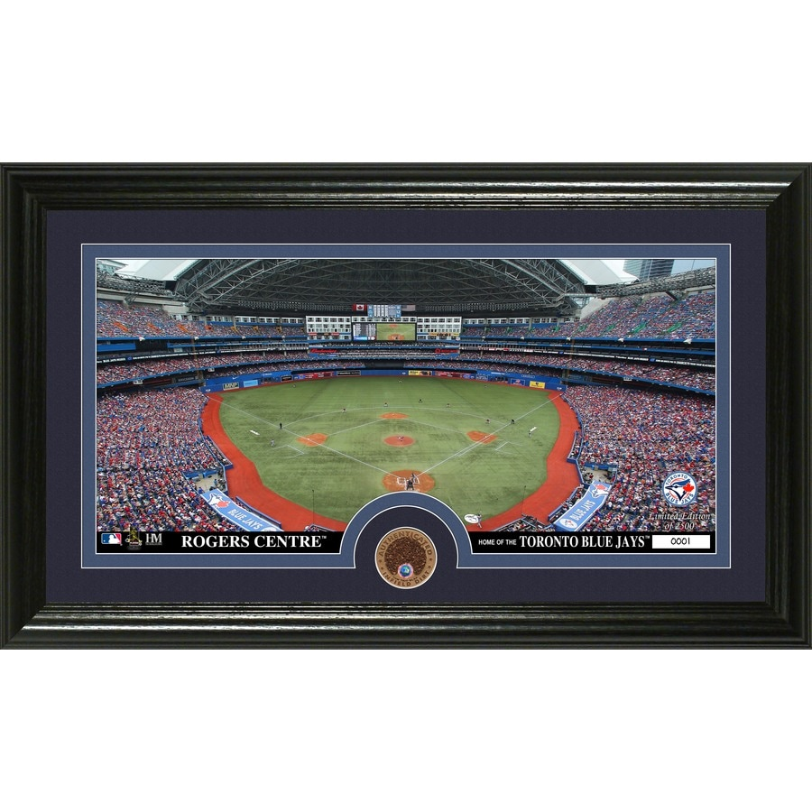 The Highland Mint 20-in W x 12-in H Toronto Blue Jays Infield Dirt Coin Panoramic Photo Mint Wall Art